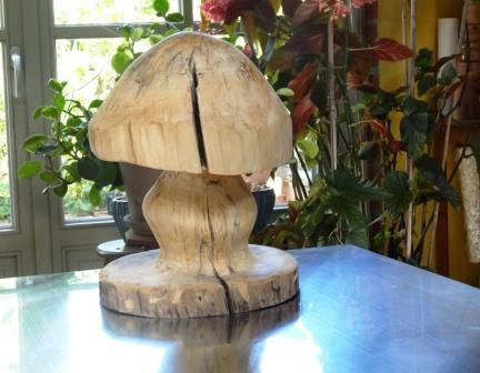 paddenstoel in hout